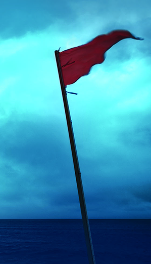 Red Flag - signifies risk